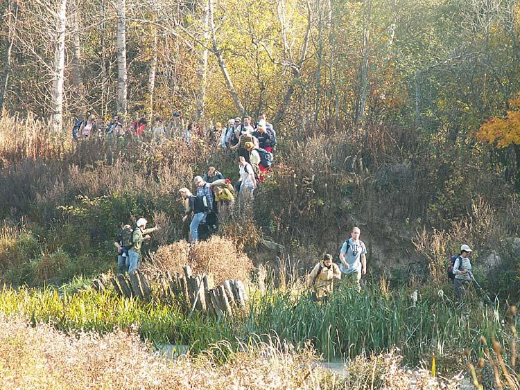 """фото """"Осенний поход"""" метки: пейзаж, лес, осень"""