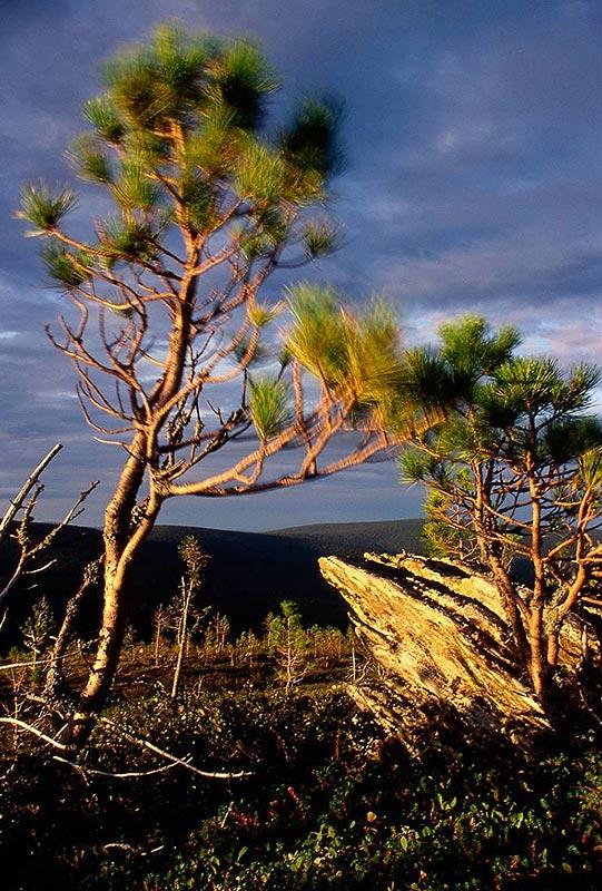 "фото ""Evening in mountains."" метки: пейзаж, горы"
