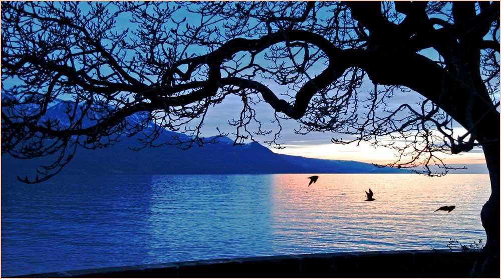 """фото """"Наперегонки с закатом"""" метки: пейзаж, вода"""