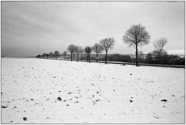 "photo ""road"" tags: landscape, winter"
