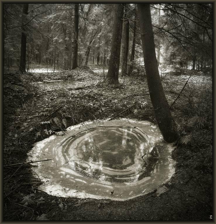 """фото """"внутри пейзажа..."""" метки: пейзаж, зима"""