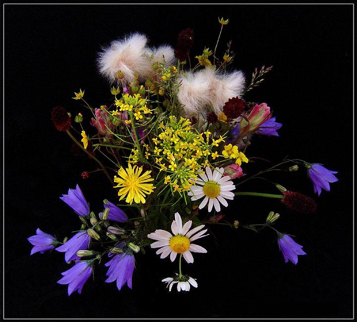 """фото """"Букетик таёжных цветов"""" метки: природа, натюрморт, цветы"""