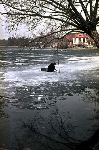 "фото ""До последней льдинки"" метки: жанр,"