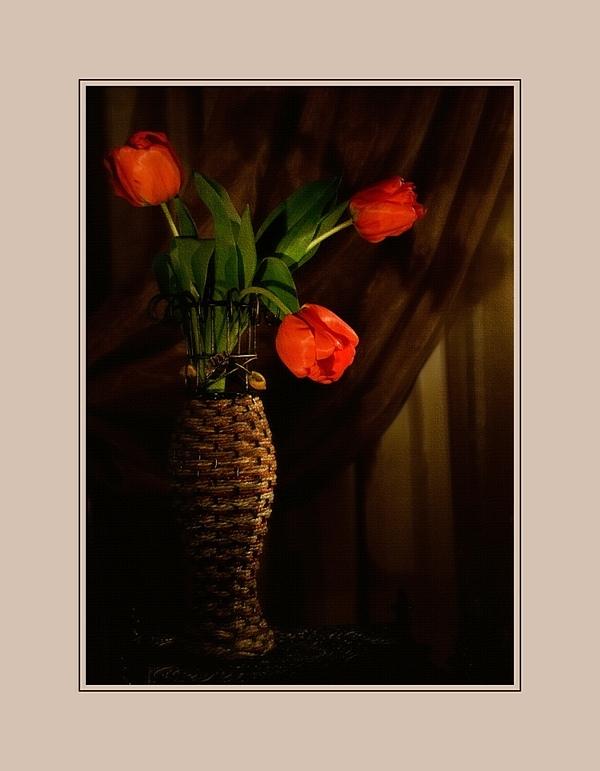 "фото ""Про тюльпаны"" метки: натюрморт,"