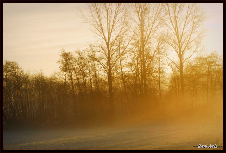 "фото ""misty sunday morning"" метки: пейзаж, закат, зима"