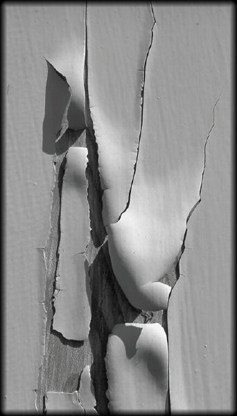 "photo ""Peeling Paint"" tags: still life, black&white,"