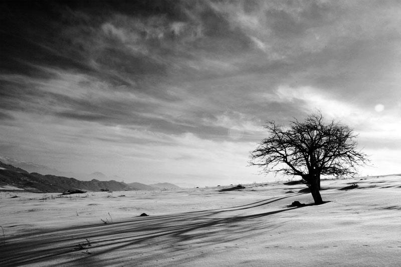 """фото """"B/W 2"""" метки: пейзаж, зима"""