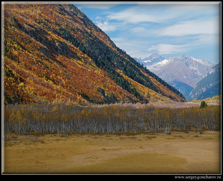 "фото ""Домбай"" метки: пейзаж, горы, лес"