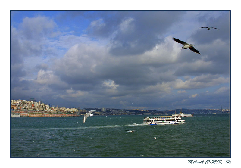 "photo ""Istanbul & Gulls"" tags: landscape, water"