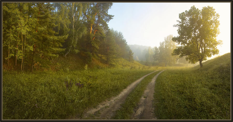 "photo ""Morning after a thunder-storm."" tags: landscape, forest, summer"