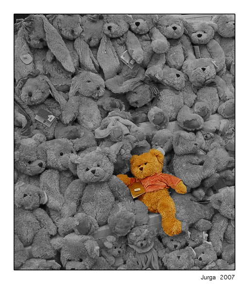 "photo ""Teddy bears"" tags: misc.,"