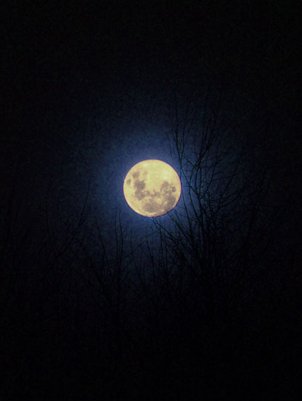"photo ""The moon"" tags: landscape, night"