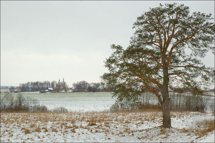 "photo ""Bizarre January 2007"" tags: landscape, nature, winter"