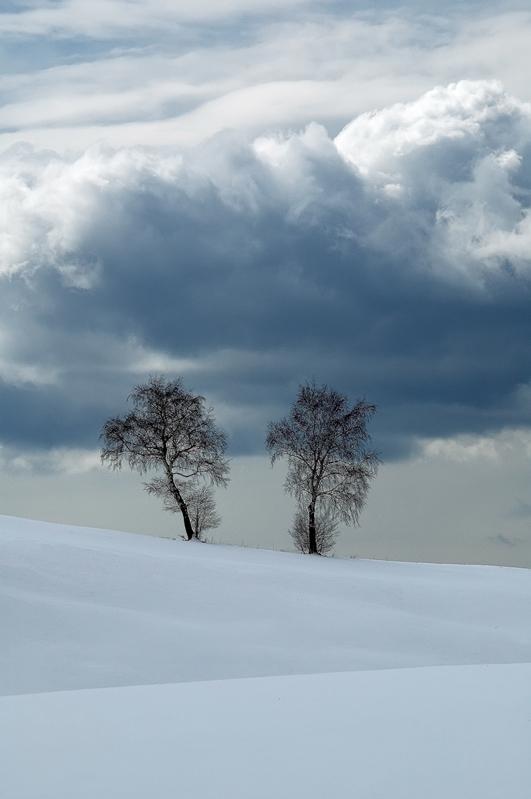 """фото """"Duet"""" метки: пейзаж, горы, зима"""