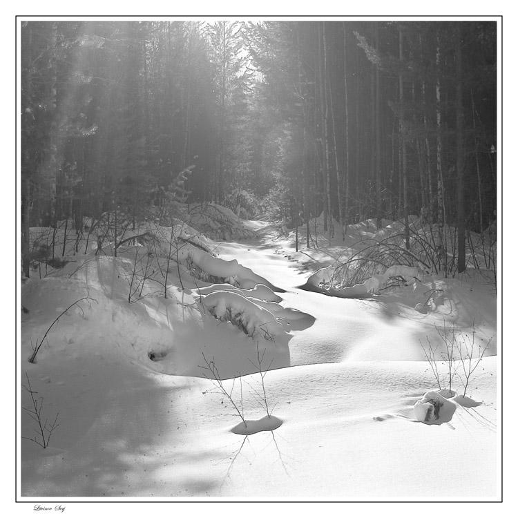 "фото ""В лучах весеннего солнца..."" метки: пейзаж, зима"