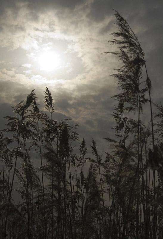 """фото """"~~~"""" метки: пейзаж,"""