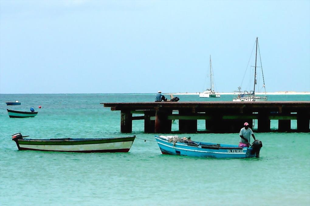 "photo ""Island of Sal"" tags: travel, still life, Africa"