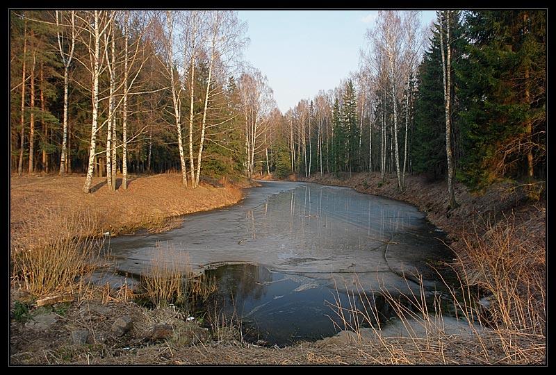 """фото """"Павловск"""" метки: пейзаж, весна, вода"""