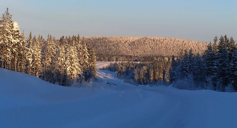 """фото """"Зимняя дорога"""" метки: пейзаж, природа, зима"""