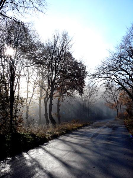 "photo ""Shumen Plateu II"" tags: nature, landscape, spring"