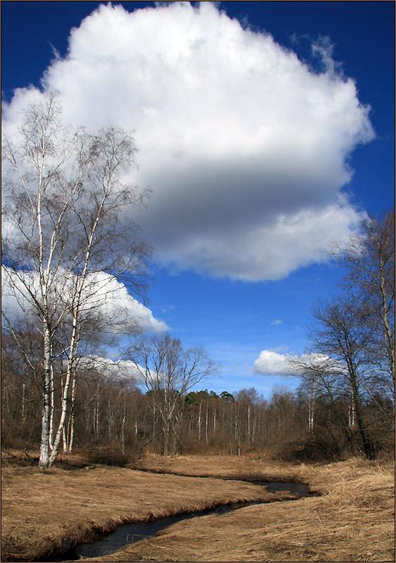 """фото """"Весна"""" метки: пейзаж, весна"""