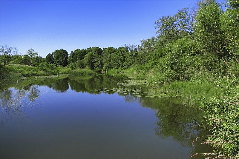 """фото """"Тишь да гладь"""" метки: пейзаж, вода"""