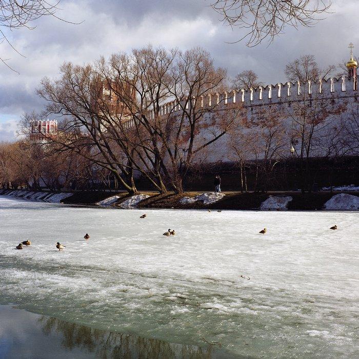 "фото ""монастырская стена"" метки: пейзаж, архитектура, весна"