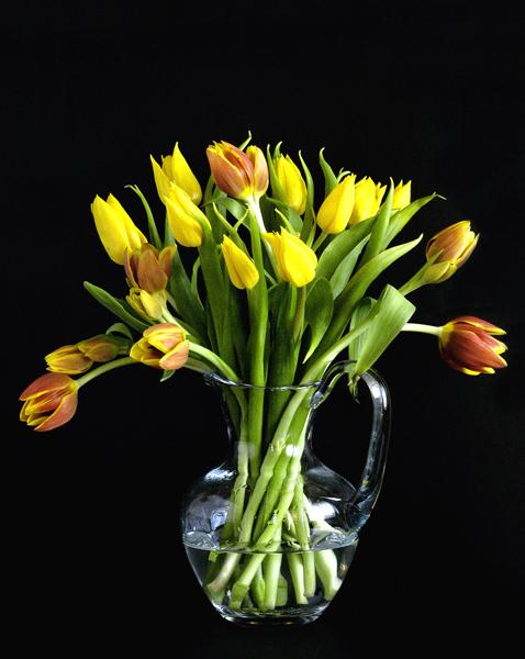 "фото """" Flowers for the ladies"""" метки: натюрморт,"