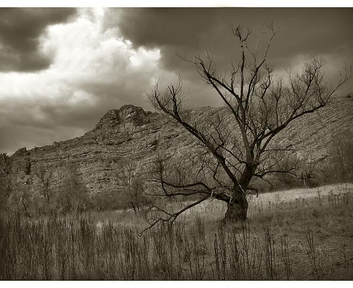 """фото """"Golden Valley II"""" метки: пейзаж,"""