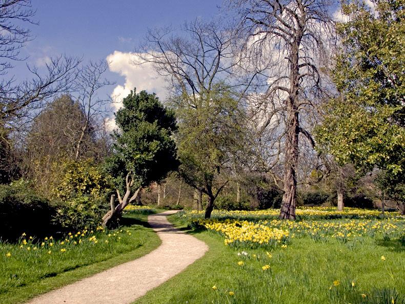 """фото """"Walk along the path"""" метки: природа,"""