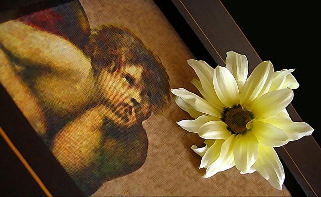 """фото """"цветок"""" метки: ,"""