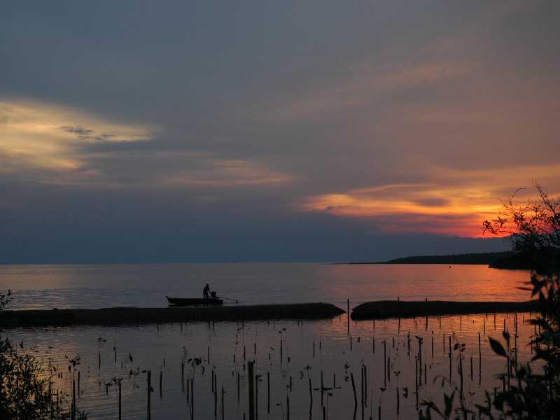 """фото """"boat and mangrove"""" метки: пейзаж, закат"""