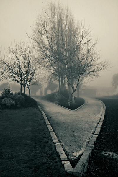 "фото ""Park"" метки: пейзаж, путешествия, Европа, зима"