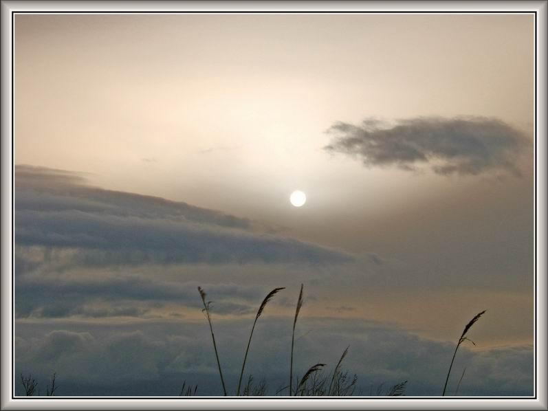 """фото """"Весенний рассвет"""" метки: ,"""