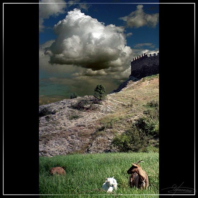 """фото """"Домой пора, братец..."""" метки: пейзаж, горы, облака"""