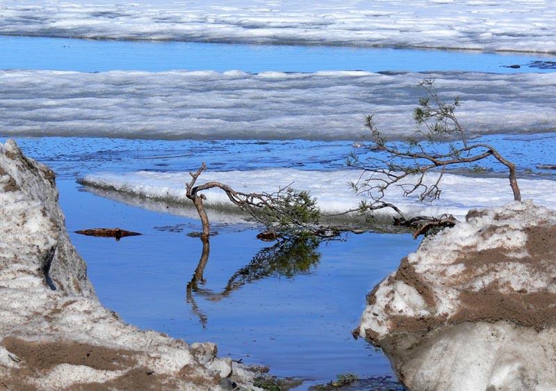 """фото """"Весенняя Ладога"""" метки: пейзаж, весна, вода"""