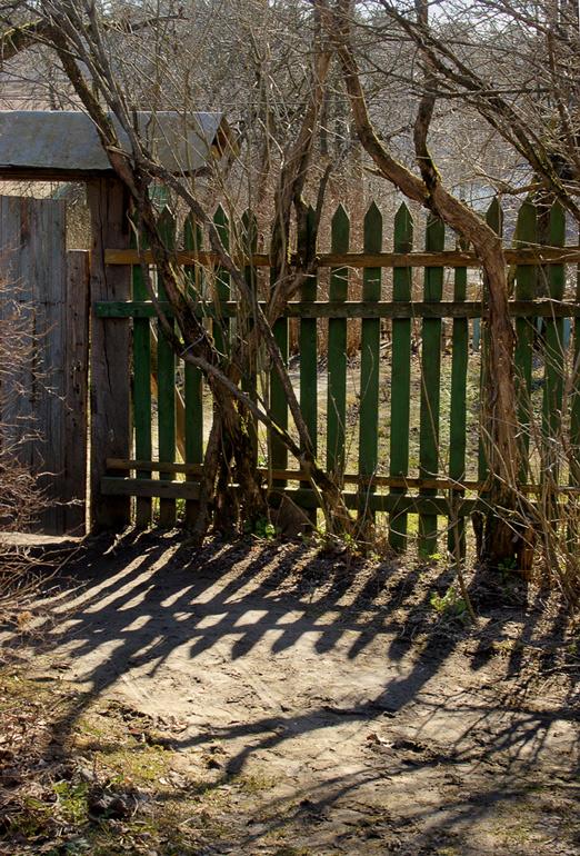 """фото """"На деревенской улочке"""" метки: пейзаж, весна"""