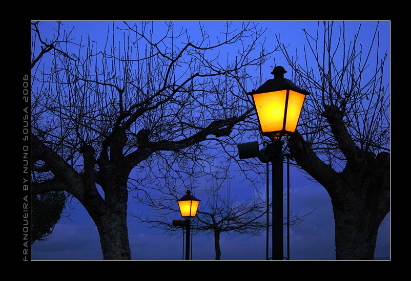 "фото ""the light"" метки: разное,"