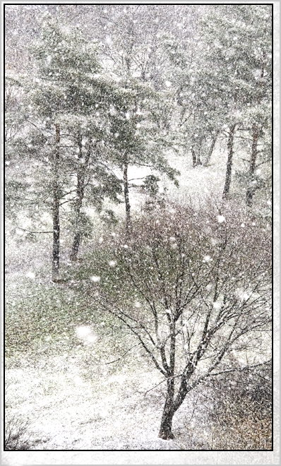 "фото ""Москва. Апрель"" метки: пейзаж, город, весна"