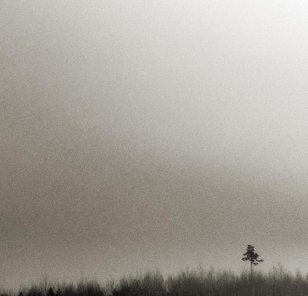 """фото """"___Y_"""" метки: пейзаж,"""
