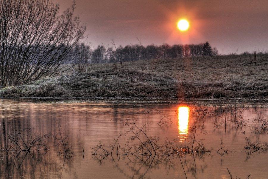 """фото """"На ближайшей к даче луже."""" метки: пейзаж, вода, закат"""