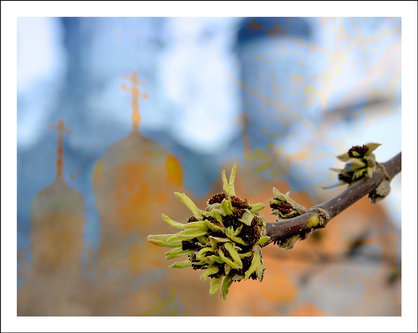 """фото """"Весенний сон"""" метки: архитектура, пейзаж,"""