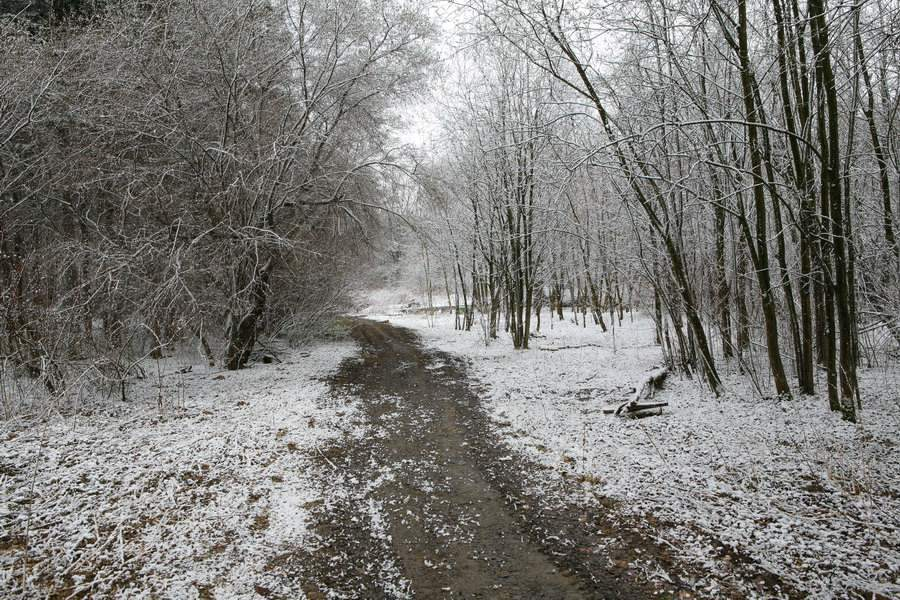 """photo """"Spring snow"""" tags: landscape, nature, spring"""