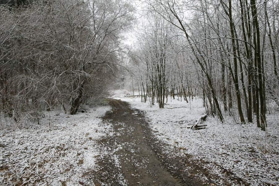 """фото """"Весенний снег"""" метки: пейзаж, природа, весна"""