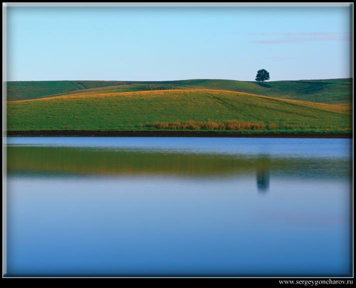 "фото ""Одинокое дерево"" метки: пейзаж, вода, лето"