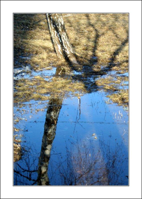 """фото """"Отражение весны"""" метки: природа,"""
