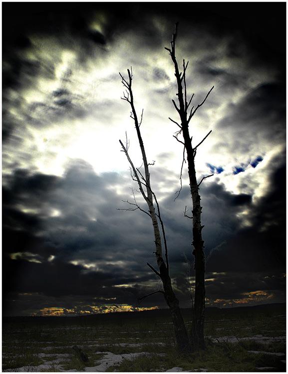 """фото """"Холодный мартовский закат."""" метки: пейзаж, закат"""
