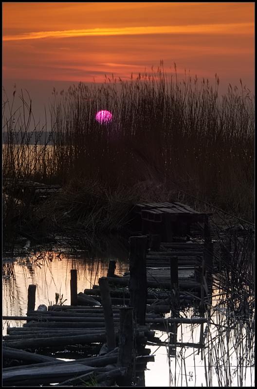 """фото """"*"""" метки: пейзаж, весна, закат"""
