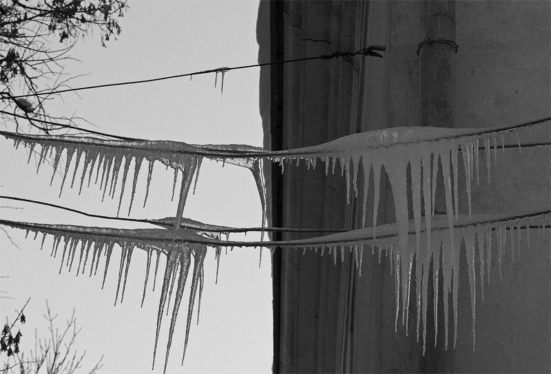 """фото """"Ледяные иглы"""" метки: черно-белые,"""