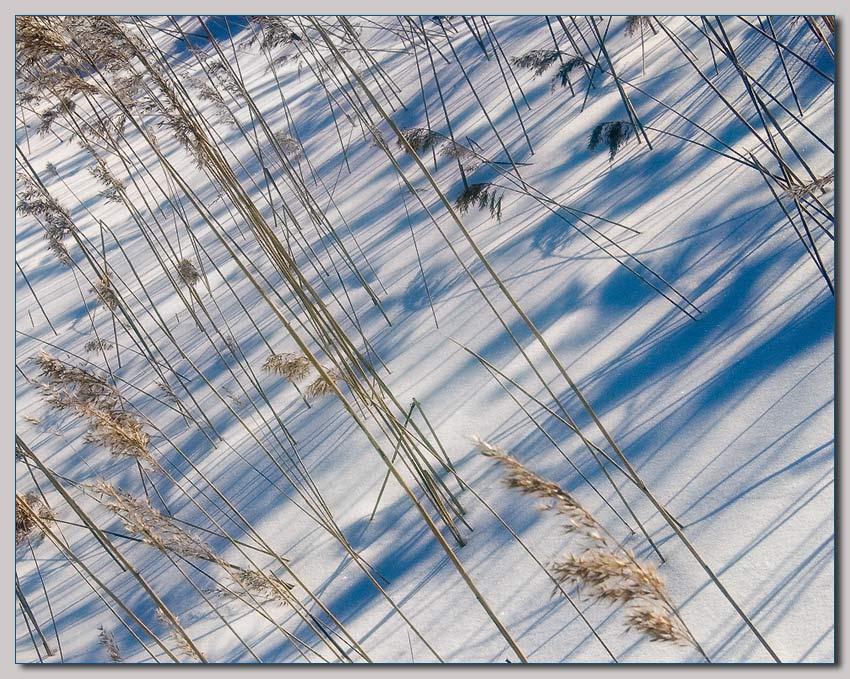 "photo ""Shade Pattern"" tags: landscape, winter"